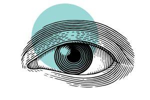 Éruga Comunicación- Branding Digital