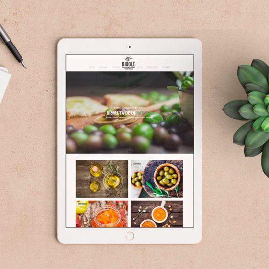 marketing e commerce - tienda online bioolé - agencia de marketing valencia