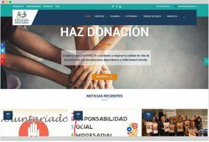 marketing solidario ong - cocemfe cv - agencia de marketing online valencia